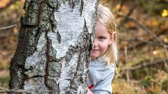 Hide and seek in the woods (tonyguest) Tags: hide seek woods tree trees autumn höst fall skogen boön karlshamn blekinge sverige sweden tonyguest eye face hair