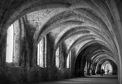 Fountains Abbey, Yorkshire (plot19) Tags: fountains abbey yorkshire britain british blackwhite blackandwhite building plot19 photography nikon north northern england