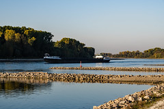 20181015-K32E7583 (AldAsAck1957) Tags: rhine karlsruhe germany low water sunset fall colour
