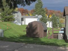 The neighborhood (creed_400) Tags: november fall autumn belmont west michigan