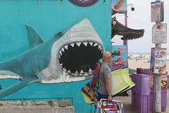 shark attack (raffaele pagani) Tags: oceanbeachsandiego ob sandiego calofornia unitedstates spiaggia mare oceano oceanopacifico pacificocean canon murale