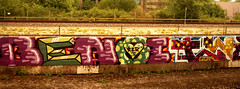 graffiti in Amsterdam (wojofoto) Tags: amsterdam nederland netherland holland graffiti streetart wojofoto wolfgangjosten benoi benoit trackside throws throwups throw throwup