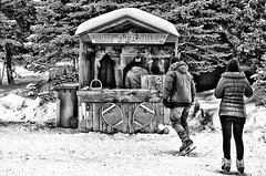 Winter in Canada (stephaneblaisphoto) Tags: adult architecture built structure casual clothing cold temperature day full length leisure activity lifestyles men nature outdoors people plant real rear view snow standing tree warm winter women bw blackandwhite monochrome