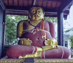 Tan Pra Maha Kajjana - Wat Chedi Luang (Crisologo) Tags: thailand chiangmai templo buda tailandia religion templee statue watchediluang travel viaje