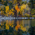 Colorful Aspen Reflection thumbnail