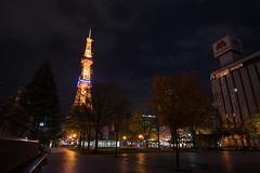 DSC_4524_ (yaa-) Tags: 札幌市 北海道 日本 jp hokkaido sapporo nikon d850 16354 nikkor 札幌 night odori park 大通公園