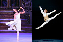 Royal Ballet Principals Francesca Hayward and Steven McRae to star in <em>Cats</em>