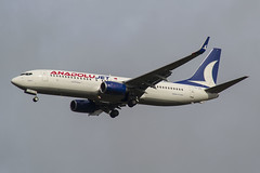 TC-JFF Anadolu Jet Boeing 737-8F2(WL) (natan_ivanov83) Tags: airplane aircraft vko spotting vnukovo boeing boeing737 anadolu