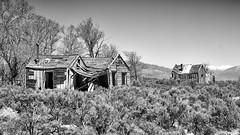 Main Street (joeqc) Tags: nevada nv whitepinecounty minerva abandoned forgotten black bw blancoynegro blackandwhite white monochrome mono ghosttown nevadaghosttown oncewashome canon t3i efs1855f3556isii sagebrush
