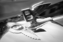 Bentley (nickdifi) Tags: cars luxury tradition technology mechanics history