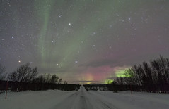 Night-Drive (Joost10000) Tags: aurora borealis auroraborealis northern lights northenlights finland suomi lapland arctic winter snow road ice wood trees stars longexposure light magnetic mysterious canon canon5d eos outddors nature natur landscape landschaft