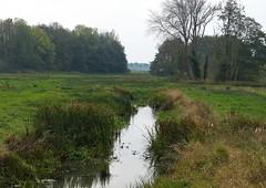 Landscape with heron (joeke pieters) Tags: 1440250 panasonicdmcfz150 assen drenthe nederland netherlands holland nswandeling drentscheaa landschap landscape landschaft paysage reiger heron deurzerdiep deurze