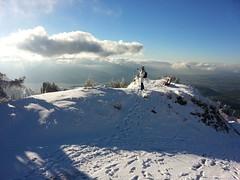 Winter's Near (Daphne-8) Tags: rigi schweiz switzerland zwitserland mountain snow schnee sneeuw neige nieve neve suisse suiza suiça me ich lo yo ik herfst herbst autumn lakelucerne vierwaldstättersee