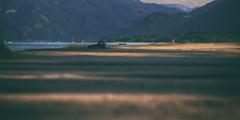 (a└3 X) Tags: natur nature alexfenzl olympus sonne licht österreich austria landscape outdoors color wildlife 3x a└3x wow availablelight
