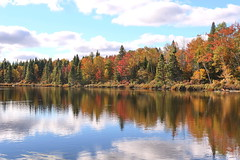 AUTUMN SCENERY |  FALL COLOURS  |  REFLECTIONS  | GASPESIE |  QUEBEC  |  CANADA (J P Gosselin) Tags: scenery | fall colours gaspesie quebec canada canon 7d 7dmarkii rebel t2i canonrebelt2i eos canon7d markii rebelt2i canonrebel canont2i eost2i eos7d eos7dmarkii mark 2 mark2 eos7dmark2 canon7dmarkii ii canoneosrebelt2i canoneos7d canoneos ph:camera=canon autumn