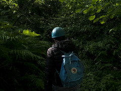 Hard-hats at How Stean Gorge, September 2018 (AdamGreenwood) Tags: hardhat walking backpack outdoors hiking leaves greenery autumn september