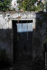 La porte du fond / Backdoor / La puerta trasera (Fontenay-sous-Bois Officiel FRANCE) Tags: fontenay fontenaysousbois regionparisienne valdemarne iledefrance 94 94120 fsb france belle beautiful nice french frances francia buena bonita hermosa porte door backdoor decay puerta bois wood