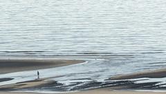 Alone (JLM62380) Tags: alone mer plage vagues seul sea beach waves blue bleu man homme equihen france sable sand ocean