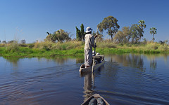 Return from the campsite (nisudapi) Tags: 2018 africa botswana okavango delta okavangodelta canoe makoro mokoro water reflection poler pole