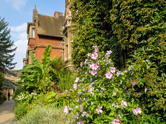 Pembroke College (Sir Cam @camdiary) Tags: cambridge camdiary cambridgeuniversity pembrokecollege garden flowers