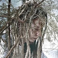 Te has convertido en árbol y de las ramas gotea miel (COLINA PACO) Tags: portrait retrato ritratto ragazzo boy arboles arbres arbol trees tree photoshop photomanipulation fotomanipulación fotomontaje franciscocolina
