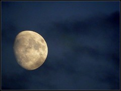Moon Shot Taken On October 20, 2018 - Editing Was Done On October 27, 2018 - All Work by STEVEN CHATEAUNEUF (snc145) Tags: sky night evening moon moonshot outdoor nature photo editedimage october202018 october272018 stevenchateauneuf vividstriking flickrunitedaward bright bold vivid