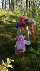 10134 vilhelmina berry picking in vilhelmina (What about the Arctic 3) Tags: 2007 sverige sweden vilhelmina
