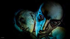 Don't Eat Stuff Off The Sidewalk (10 MIX) Tags: head face mesh twins secondlife sl photoshop lumipro virtual 3d color bald eyes blue dark