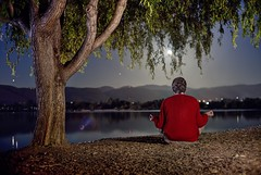 Meditating mind under a tree (PeterThoeny) Tags: fremont sanjose california siliconvalley sanfranciscobay sanfranciscobayarea southbay park centralpark lake water landscape shore lakeshore night outdoors moon fullmoon moonrise reflection meditation person red sony sonya7 a7 a7ii a7mii alpha7mii ilce7m2 fullframe vintagelens dreamlens canon50mmf095 canon 1xp raw photomatix hdr qualityhdr qualityhdrphotography tree fav100