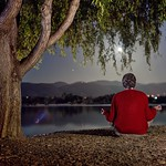 Meditating mind under a tree thumbnail