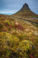 Autumn at Kirkjufell, Snæfellsnes, Iceland (Fabien Guittard) Tags: automne voyage montagne paysage fall landscape mountain travel snæfellsnes islande is