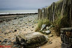 beach at Llandanwg 6 (1 of 1) (steamnut777) Tags: wales fence rocks canon mist stones