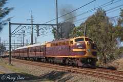 Clarendon Classic (Henry's Railway Gallery) Tags: 4204 42class emd diesel clyde tuscan nswgr lvr lachlanvalleyrailway diesellocomotive heritagetrain passengertrain clarendonclassicmachineryrally clarendon richmond 8l05