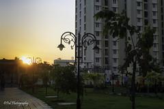 Beautiful sunset (ppaulvadivu) Tags: paulvadivu chennai animal sunst india park