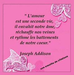 L'amour est une seconde vie (proverbecitationweb) Tags: citation proverbe quote motivation inspiration