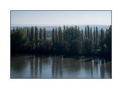 En bord de Seine, ombre et lumière. (SiouXie's) Tags: couleur color fujixe2 fuji fujifilm 55200 siouxies duclair seine bord arbre tree nature paysage landscape reflet reflection