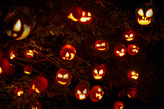Sweet Dreams (Chancy Rendezvous) Tags: chancyrendezvous davelawler blurgasm halloween decorations pumpkin lights orange tree jackolantern lantern jack ecotarium night autumn lawler