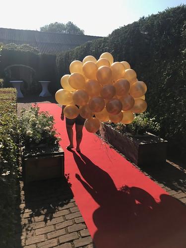 Heliumballonnen Goud Metallic Andel