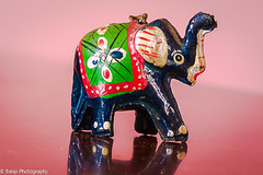 Elephant.  - (Balaji Photography : 6 Million+ views) Tags: macro macromondays vowels e elephant miniature lens macrolens letteraeiou canon canon70d tamaron hmm