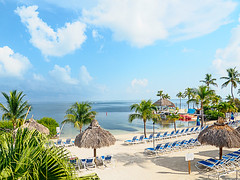 tiki_tocki (gerhil) Tags: travelphotography travel scenic vacation resort keylargo florida water sea ocean bay keylargobay gulfofmexico palm tree hut sand beach chair umbrella summer lazy relaxing lifestyle peaceful quiet early morning tropical sky clouds