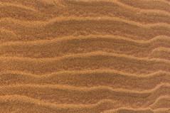 Sand (Chamikajperera) Tags: sand landscape srilanka wind dunes outdoor