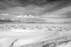 Grand Teton National Park, Wyoming. March, 2018. (Guillermo Esteves) Tags: fujifilm blackandwhite landscapes grandteton grandtetonnationalpark fujifilmxh1 nationalparks unitedstates wyoming jackson us