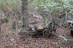 More Relics & Refugees (BennyPix) Tags: junkyard rust old classic vintage antique retro barkada wilmar ar drewcounty arkansas november 2015 © allrightsreserved unauthorizedusestrictlyprohibited allcommercialuseprohibited junk car auto automobile bennypix canon eos 50d ford flathead
