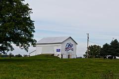 Greene County Bicentennial Barn (ramseybuckeye) Tags: greene county ohio rural farm country fields bicentennial barn cattle