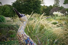 Bird Sculpture (Sean O'Hare) Tags: bird sculpture botanic gardens glasnevin dublin colour