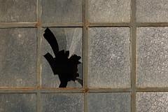 Decay (gripspix) Tags: 20180927 lislesurledoubs plant fabrik alt old industriebrache abandoned verlassen lagerraum storage sheddach window fenster sprossenfenster metal metall muntinwindow broken pane scheibe zerbrochen