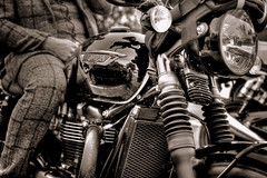 Triumph Bonneville T120 Black (Missy Jussy) Tags: trevorkerr man motorbike bike distinguishedgentlemansbikeride triumph triumphbonnevillet120black york event transport mono monochrome sepia 50mm ef50mmf18ll ef50mm ef50mmf18ii canon50mm fantastic50mm canon canon5dmarkll canon5d canoneos5dmarkii