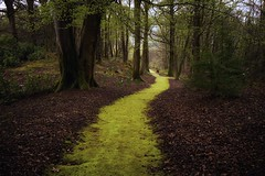 The Mossy Path (lee.mccain.photorama) Tags: fortwilliam scotland inverlochy castle leemccain leicaq