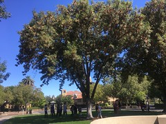 Stanford Campus (Zunkkis) Tags: stanford university california