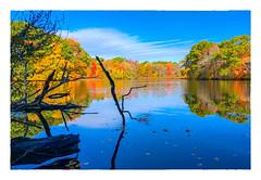 On Merchants Pond (Timothy Valentine) Tags: 2018 1018 foliage large clichésaturday sky 10mileriver autumn attleboro massachusetts unitedstates us